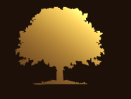 Golden Tree Logo: Return to Home